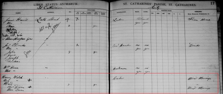 henry-walsh-family-1885-parish-census-cropped-marked
