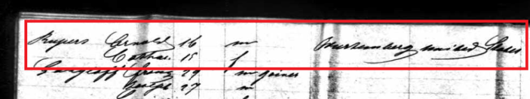 second-page-of-ruppert-manifest-marked-cropped