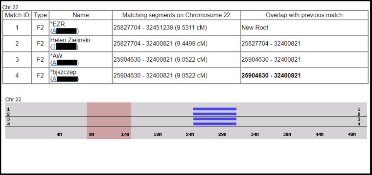 chromosome 22