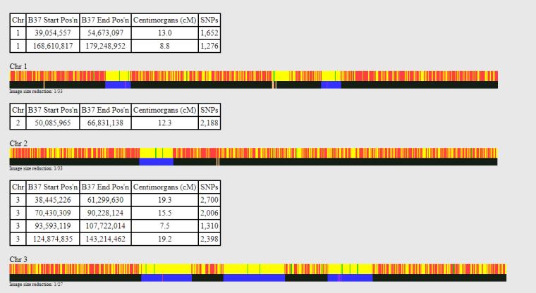 first three chromosomes showing matching segments